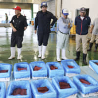First whale meat auction held since restart of Japan's commercial hunt