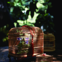 The stylish bamboo insect cage is of the same design once favored by daimyo lords and other wealthy Edoites. | COURTESY OF HANABUSA CRAFTS