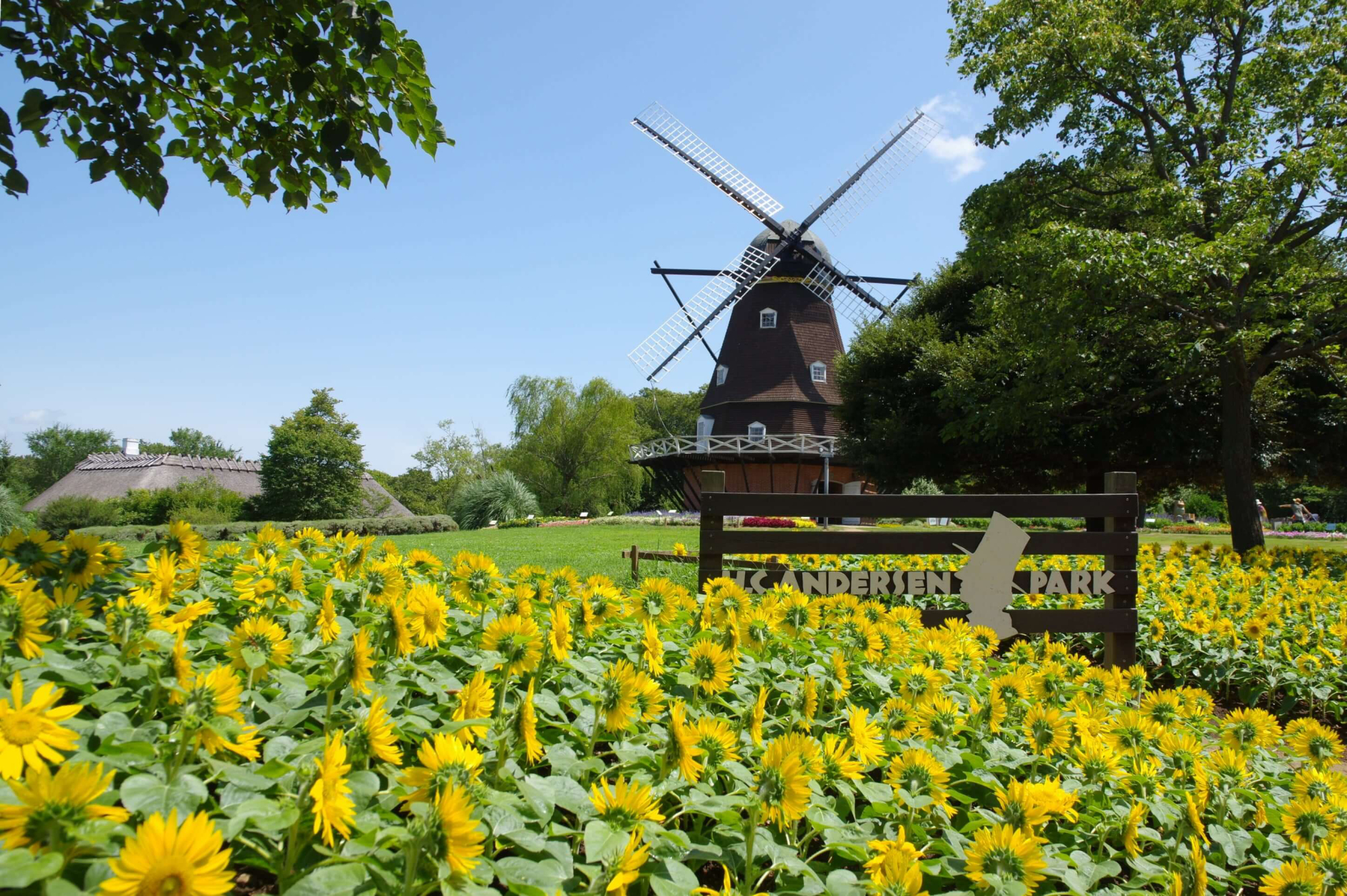 A full-scale windmill is just one of many attractions of H.C. Andersen Park. | COURTESY OF H.C. ANDERSEN PARK