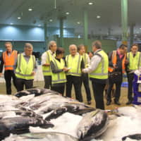 Aussie, Japanese fishmongers to swap tips in wake of Tsukiji transfer project