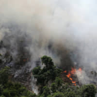A tract of Amazon jungle burns as it is cleared by loggers and farmers near the city of Novo Progresso, Para, in 2013. | REUTERS
