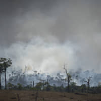 Brazil's neighbors call for meeting and Amazon pact as fires rage