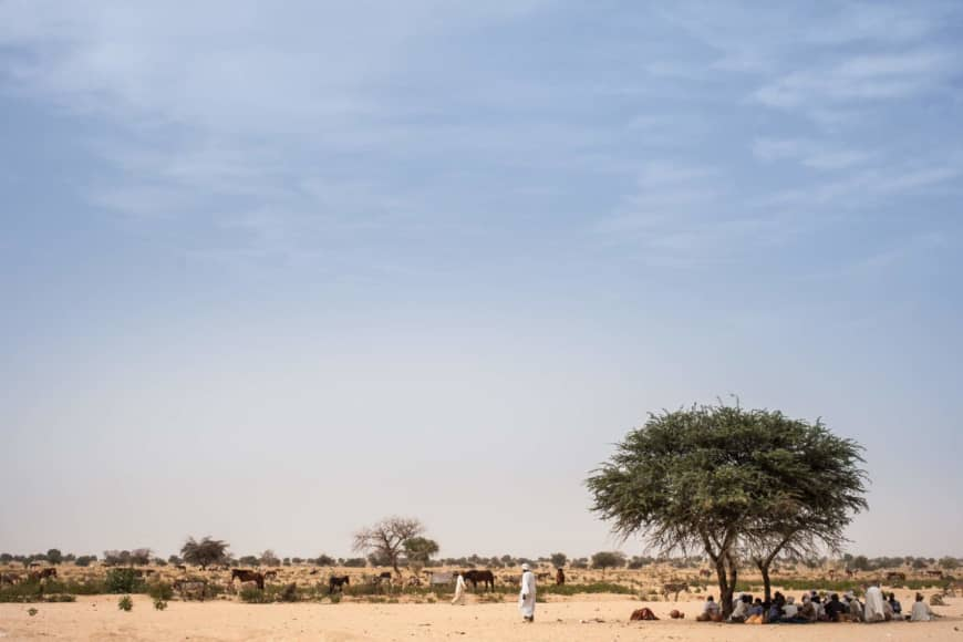 Farmers shelter under a mango tree to avoid the heat and sun on the road between Adre and Farchana in the eastern Chad region of Ouaddaï in March. Chad President Idriss Deby on Sunday declared a state of emergency in two eastern provinces after violent intercommunal clashes left dozens dead earlier this month. | AFP-JIJI