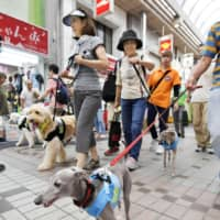 Tokyo police use dog walkers to raise awareness among elderly people about fraud cases
