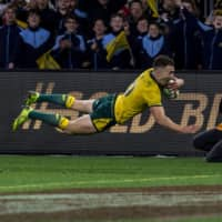 Wallabies clobber 14-man All Blacks in Rugby Championship test