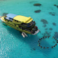 A bird's eye view of divers enjoying a daytrip on Sea Bees Diving custom-built dive boat, Excalibur II.