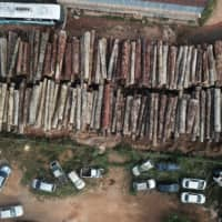 Over 300 slain in Brazil's Amazon over land and resources in past decade, HRW report says