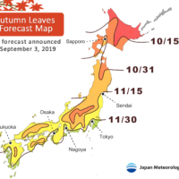 The arrival of the autumn foliage season may be pushed back because of this year's continuing summer heat, according to experts' predictions. | JAPAN METEOROLOGICAL CORP.