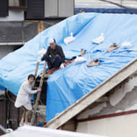 Local residents of Tateyama, Chiba Prefecture, which was hit by Typhoon Faxai, cover damaged roofs with sheets on Sunday. | KYODO