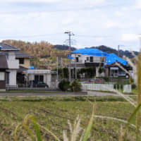 Blue plastic sheets covering damaged roofs are seen on Wednesday in Minamiboso, Chiba Prefecture. | CHISATO TANAKA
