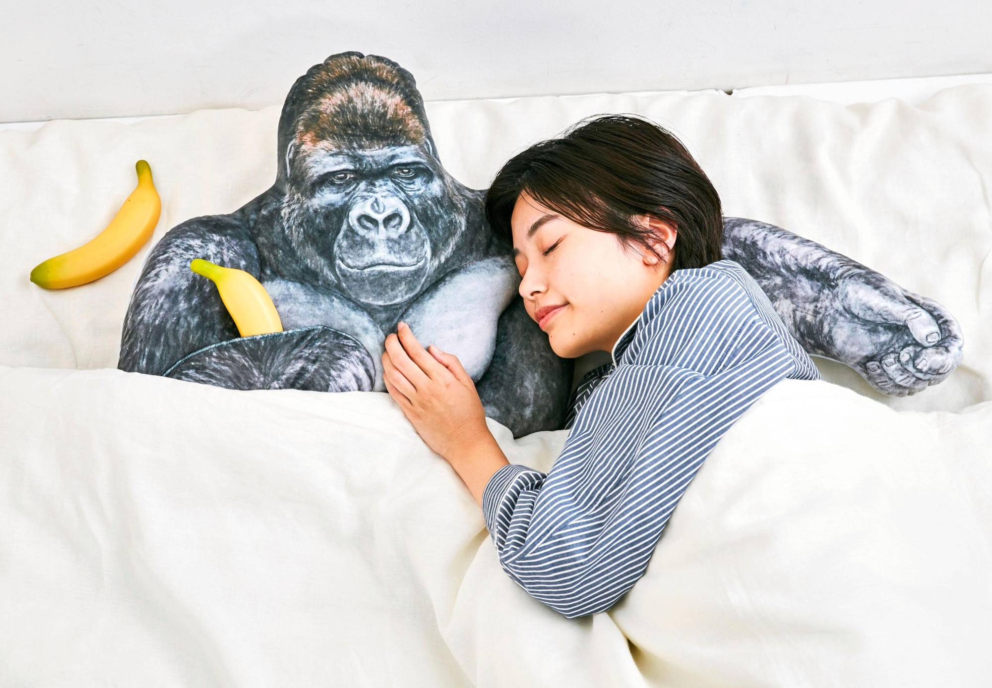 A model lies next to a pillow shaped as Shabani the gorilla. The product based on the popular animal at Higashiyama Zoo and Botanical Gardens in Nagoya is gaining attention on social media. | FELISSIMO CORP. / VIA KYODO
