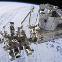 In new finding, Japanese team finds male mice sent to space retain reproductive ability