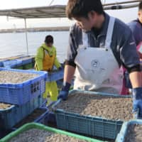 Hyogo to relax wastewater controls amid fears Seto Inland Sea is 'too clean' for fish