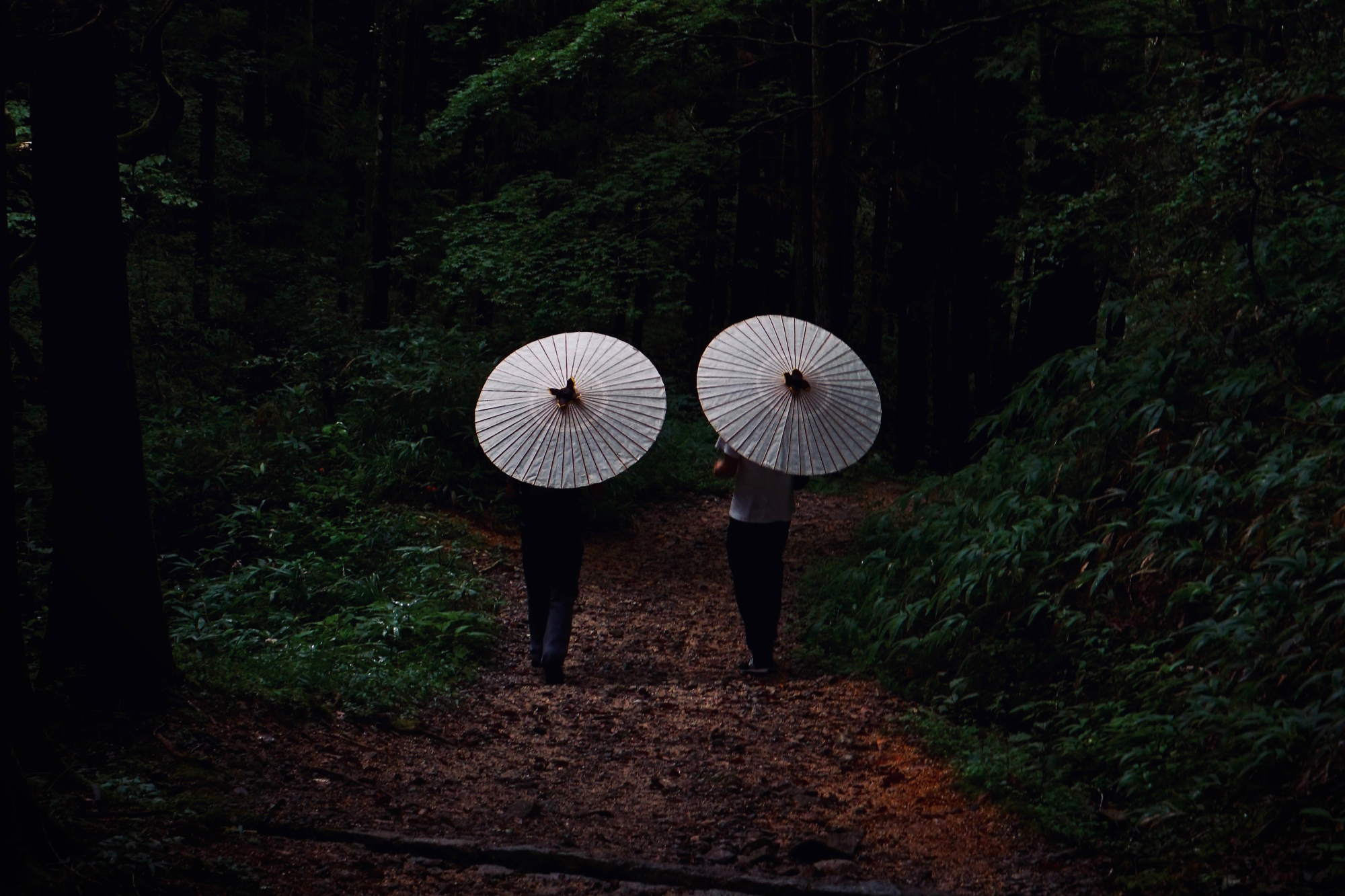 Long way round: Visitors carrying wax-paper umbrellas walk the Edo Period Nakasendo trail between the post towns of Magome and Tsumago. | OSCAR BOYD