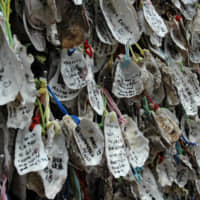 Oyster shells hang as ema (votive tablets) at Kakigara Inari Shrine in the grounds of Hase Temple. | RUSSELL THOMAS