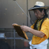 Buzzing about Ginpachi: Rooftop beekeeping in Japan's capital