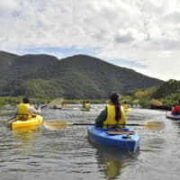 Tourists kayak on a river in a mangrove forest on Amami Oshima in Kagoshima Prefecture in December 2018. | KYODO