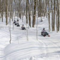 Niseko is the perfect place to enjoy snow activities such as riding snowmobiles. | NISEKO TOURISM