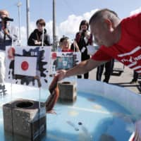 An octopus at a port in Obira, Hokkaido on Friday 'predicts' how the Japan national team will perform at the upcoming Rugby World Cup.   KYODO