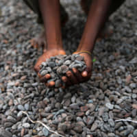 New ranking finds major chocolate companies flunked child labor scorecard