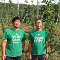 Craft beer boom spells hope for hops in Iwate town