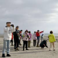 Japanese view a rock formation on Kunashiri Island during a trial tour on Wednesday. | KYODO