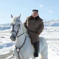 North Korean leader Kim Jong Un rises a white horse in the first snow at Mouth Paektu in this undated picture released last week. Vessels involved in the North's export of coal, which is banned under U.N. resolutions, have made repeated port calls in Japan, a report said Sunday. | KCNA / VIA AFP-JIJI