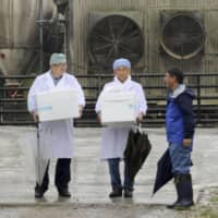 Pig vaccinations start at farms in six prefectures as swine fever spreads in Japan