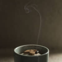 Slow burn: A fragrant wisp of smoke curls up from incense pressed into the shape of bamboo leaves. | RYOICHI OKAZAKI