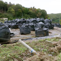 Bags containing radioactive waste are seen in Tamura, Fukushima Prefecture, in this photo taken Oct. 14 after Typhoon Hagibis struck the region earlier in the month. | KYODO