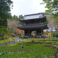 Warrior's retreat: The main gate of the 522-year-old Risenji temple, where the 16th-century warlord Uesugi Kenshin spent several of his formative years in study. | CLAIRE WILLIAMSON