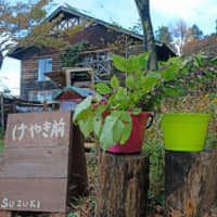 Open for business: Colored buckets outside the Suzukis' house indicate that guests are welcome for tea and that homemade produce is available for sale. | CLAIRE WILLIAMSON