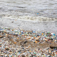Why the plastic crisis matters