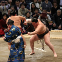 Hakuho one win from 43rd title after dismantling Abi
