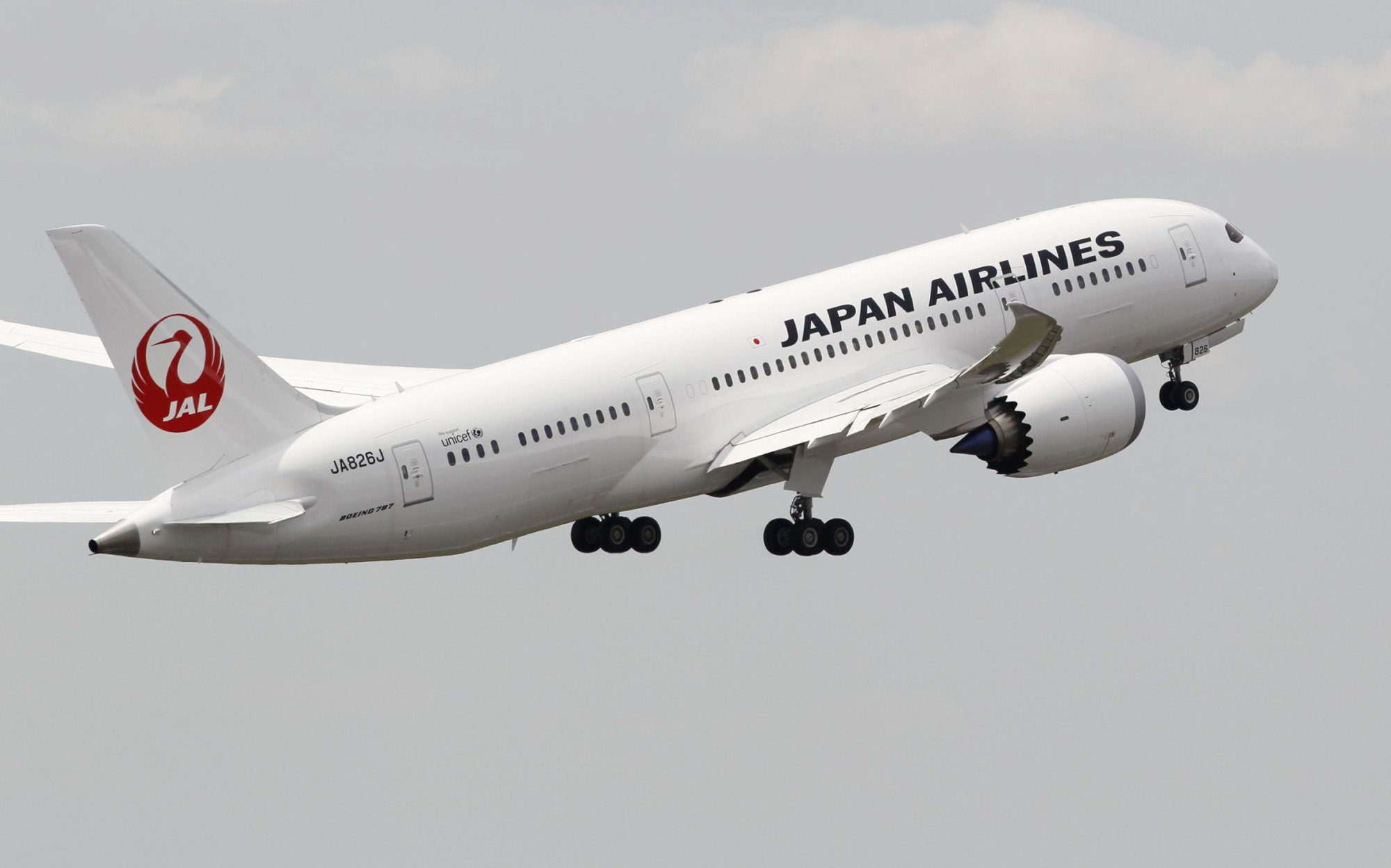 Japan Airlines Co. will launch a campaign to offer free round-trip domestic flight tickets to up to 50,000 foreign tourists who visit Japan next summer. | KYODO