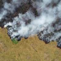 Part of the Amazon jungle is burned in Porto Velho, in the Brazilian state of Rondonia, on Aug. 24. | REUTERS