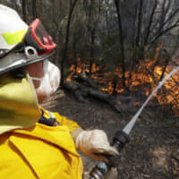 A firefighter controls a backburn near Mangrove Mountain, north of Sydney on Sunday. Hot dry conditions have brought an early start to the fire season. | AP