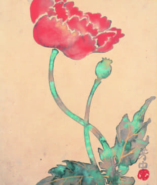 Nakamura Hochu's 'July, Poppy (from the 'Album of Flowering Plants of the Twelve Months')' (18-19th century) | COLLECTION OF HOSOMI MUSEUM