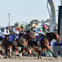 Chrysoberyl overtakes Gold Dream to win Champions Cup