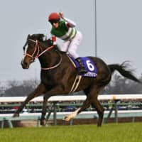 Lys Gracieux ends career on stellar note at Arima Kinen