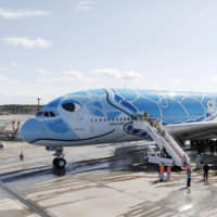 ANA to use sea turtle livery on planes for all Narita-Honolulu flights