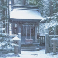 Surrendering to a hot-spring package tour in snowy Yunishigawa