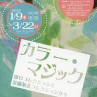 'Color Magic: From the Taguchi Collection and the Ando Collection'