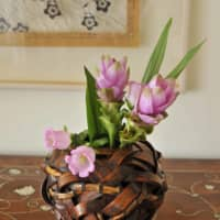 Weaving art into life: Mariangela Montgomery collects Japanese woven baskets, which she often uses for her fresh flower arrangements.   HIROSHI ABE
