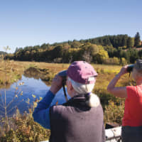 The Tualatin Valley has several nature parks, wildlife refuges and wetland preserves, which attract bird watchers, nature lovers and travelers. It is also the perfect destination for wine lovers to explore varietals that put the region on the map. | © WCVA