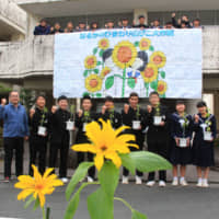 Students of Chisato Junior High School in Shinshiro, Aichi Prefecture, pose at the school with sunflowers they are growing. | CHUNICHI SHIMBUN