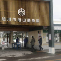 Few visitors are seen Saturday at Asahiyama Zoo in Asahikawa, Hokkaido, due to the outbreak of the coronavirus. The zoo is usually popular with families and foreign tourists. | KYODO