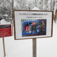 After Hokkaido backcountry skiing deaths, experts call for enforcing 'Niseko Rules'