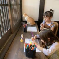Purrfect: Kids, cats and cookies
