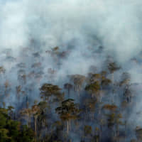 Amazon forest burns near Porto Velho in Brazil's Rondonia state on Sept. 10. | REUTERS
